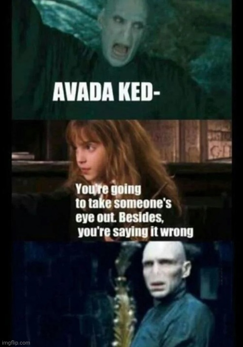 This is when you know that its REALLY bad... | image tagged in lord voldemort,hermione granger,harry potter,haha | made w/ Imgflip meme maker