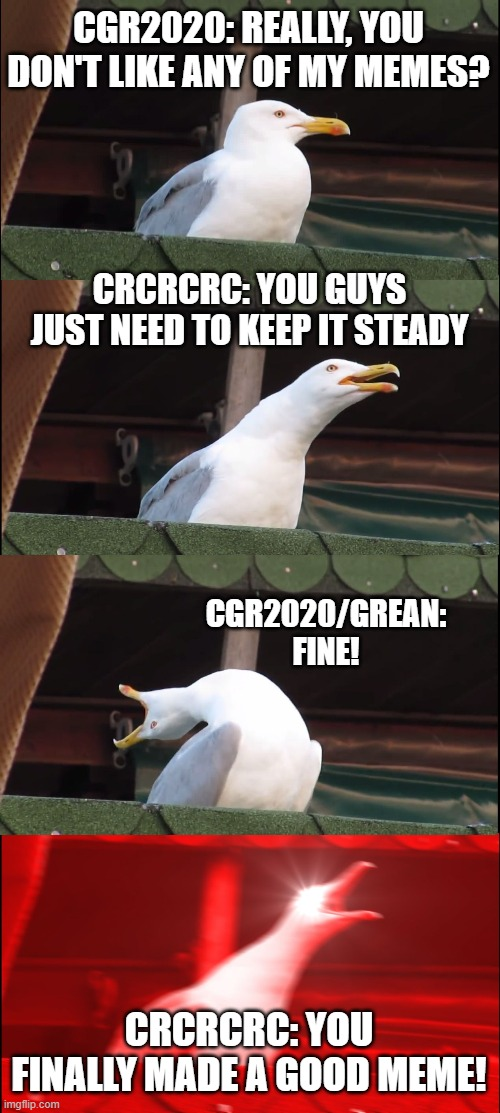 Inhaling Seagull Meme |  CGR2020: REALLY, YOU DON'T LIKE ANY OF MY MEMES? CRCRCRC: YOU GUYS JUST NEED TO KEEP IT STEADY; CGR2020/GREAN: FINE! CRCRCRC: YOU FINALLY MADE A GOOD MEME! | image tagged in memes,inhaling seagull | made w/ Imgflip meme maker