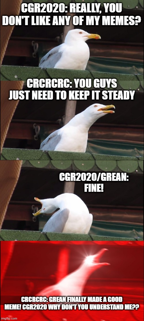 Inhaling Seagull Meme |  CGR2020: REALLY, YOU DON'T LIKE ANY OF MY MEMES? CRCRCRC: YOU GUYS JUST NEED TO KEEP IT STEADY; CGR2020/GREAN: FINE! CRCRCRC: GREAN FINALLY MADE A GOOD MEME! CGR2020 WHY DON'T YOU UNDERSTAND ME?? | image tagged in memes,inhaling seagull | made w/ Imgflip meme maker
