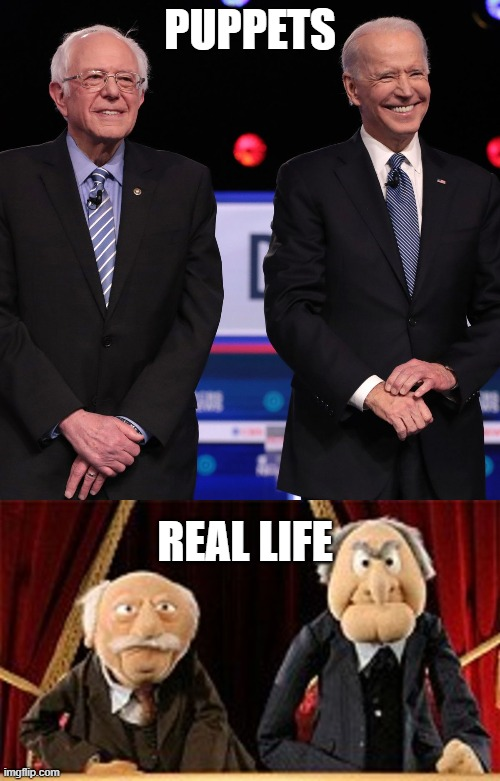 PUPPETS; REAL LIFE | image tagged in puppets,vs,real life,muppets | made w/ Imgflip meme maker
