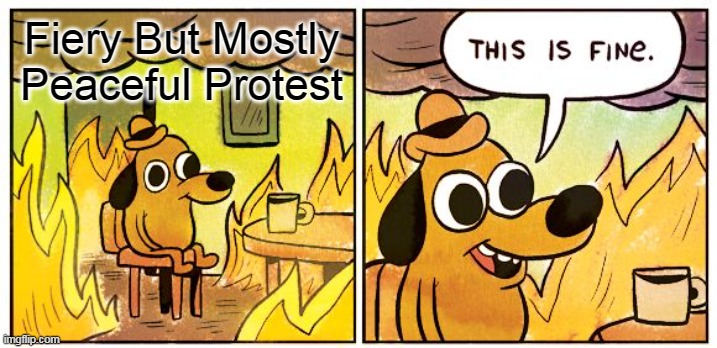 This Is Fine Meme | Fiery But Mostly Peaceful Protest | image tagged in memes,this is fine | made w/ Imgflip meme maker