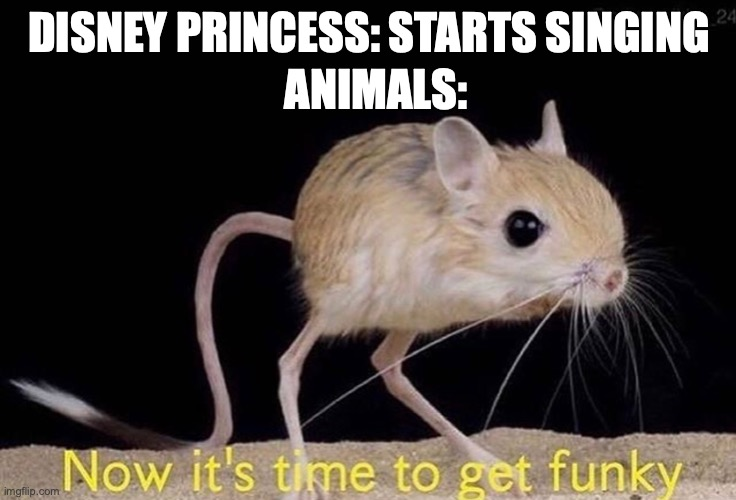Now it's time to get funky |  ANIMALS:; DISNEY PRINCESS: STARTS SINGING | image tagged in now it s time to get funky | made w/ Imgflip meme maker