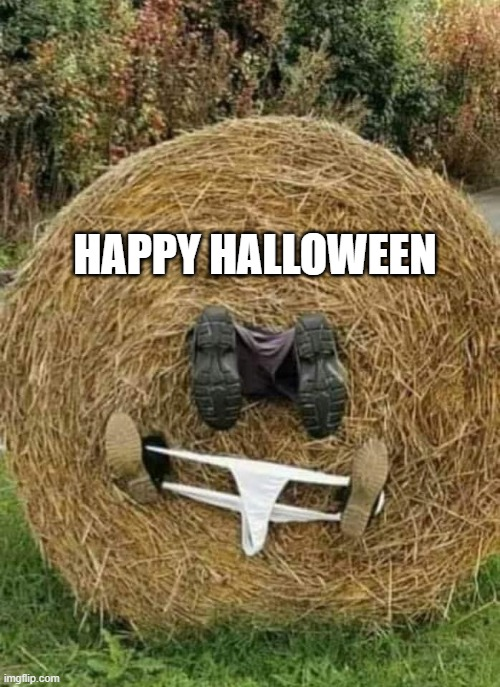 happy halloween |  HAPPY HALLOWEEN | image tagged in halloween,happy halloween,hayrolls | made w/ Imgflip meme maker