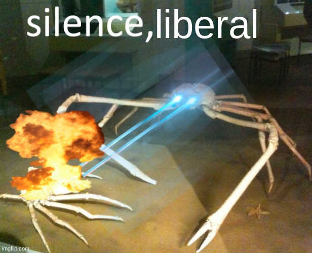 Silence Crab | liberal | image tagged in silence crab | made w/ Imgflip meme maker
