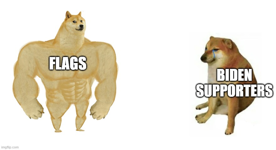 Buff Doge vs Crying Cheems |  FLAGS; BIDEN SUPPORTERS | image tagged in buff doge vs crying cheems | made w/ Imgflip meme maker