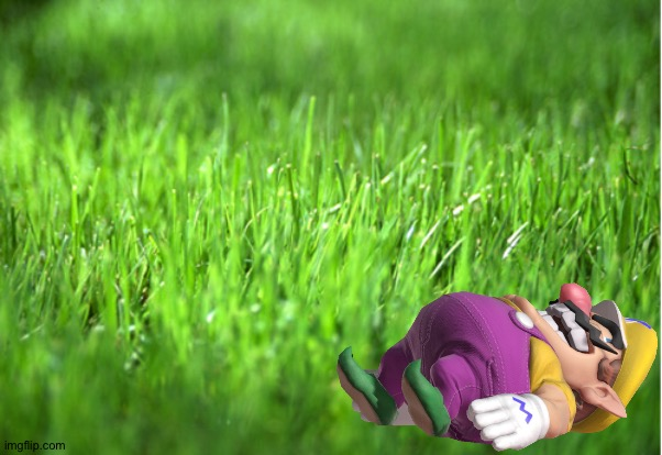 Wario_dies_by_laying_down_on_grass_for_too_long.mp3 | image tagged in funny | made w/ Imgflip meme maker