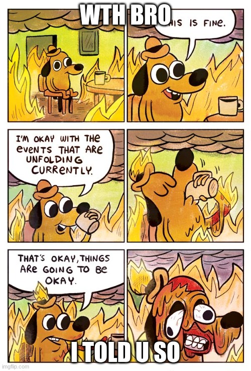 This is Fine Dog |  WTH BRO; I TOLD U SO | image tagged in this is fine dog | made w/ Imgflip meme maker