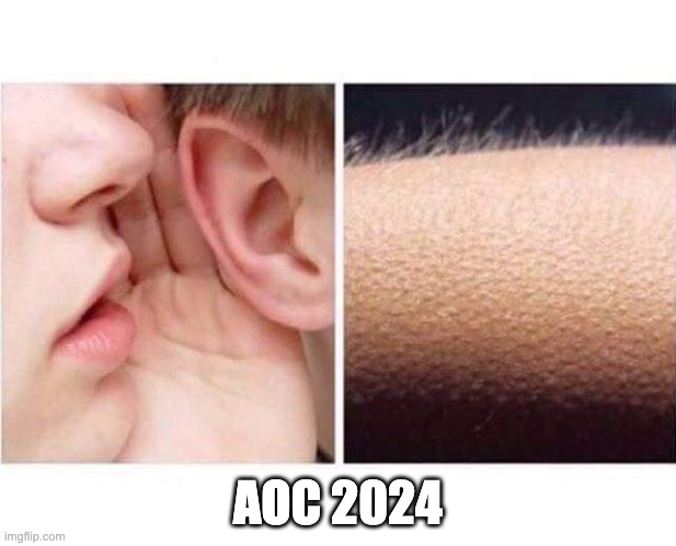 Goosebumps |  AOC 2024 | image tagged in goosebumps | made w/ Imgflip meme maker