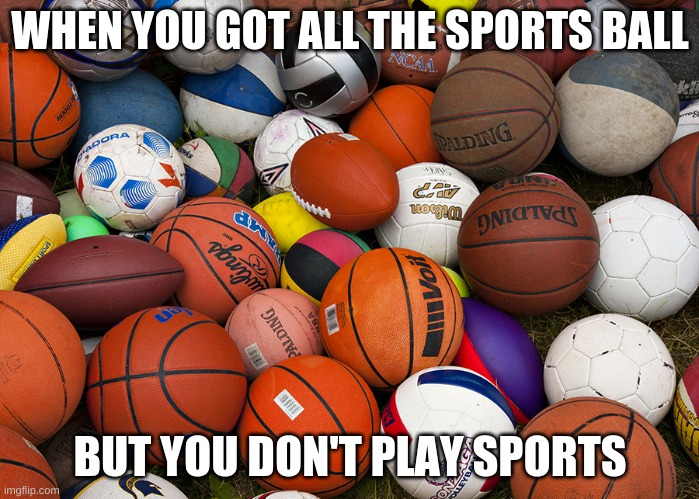 Balls season |  WHEN YOU GOT ALL THE SPORTS BALL; BUT YOU DON'T PLAY SPORTS | image tagged in sports balls | made w/ Imgflip meme maker