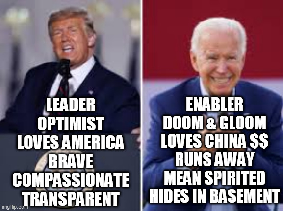 The Choice is Clear |  LEADER OPTIMIST LOVES AMERICA BRAVE COMPASSIONATE TRANSPARENT; ENABLER DOOM & GLOOM LOVES CHINA $$ RUNS AWAY MEAN SPIRITED HIDES IN BASEMENT | image tagged in trump biden,biden dark winter,trump leader,trump biden contrast,americas choice,election choice | made w/ Imgflip meme maker