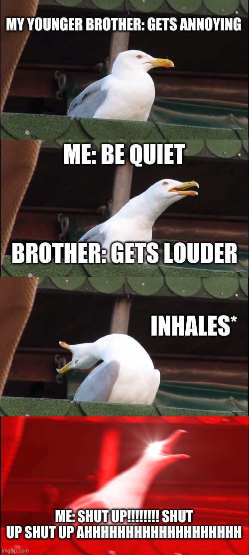 Inhaling Seagull Meme |  MY YOUNGER BROTHER: GETS ANNOYING; ME: BE QUIET; BROTHER: GETS LOUDER; INHALES*; ME: SHUT UP!!!!!!!! SHUT UP SHUT UP AHHHHHHHHHHHHHHHHHHH | image tagged in memes,inhaling seagull | made w/ Imgflip meme maker