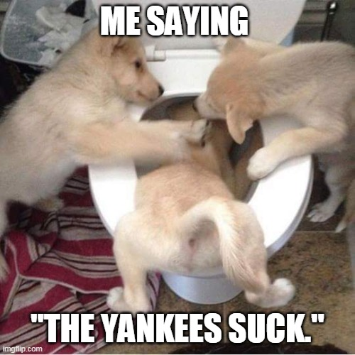 "The Yankees suck |  ME SAYING; ""THE YANKEES SUCK."" 