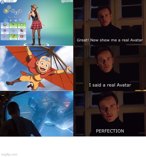 The Real Avatar |  Great! Now show me a real Avatar; I said a real Avatar; PERFECTION | image tagged in perfection,avatar,funny,sims,sci-fi,james cameron | made w/ Imgflip meme maker