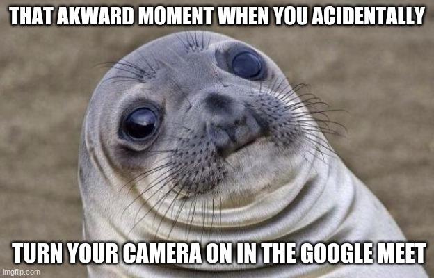 oops |  THAT AKWARD MOMENT WHEN YOU ACIDENTALLY; TURN YOUR CAMERA ON IN THE GOOGLE MEET | image tagged in memes,awkward moment sealion,online school,oh wow are you actually reading these tags | made w/ Imgflip meme maker