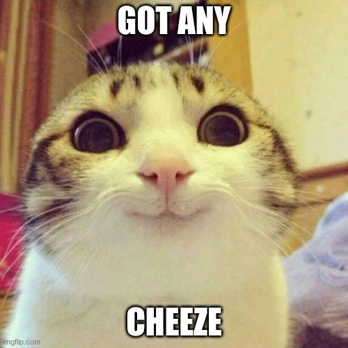 Smiling Cat |  GOT ANY; CHEEZE | image tagged in memes,smiling cat | made w/ Imgflip meme maker