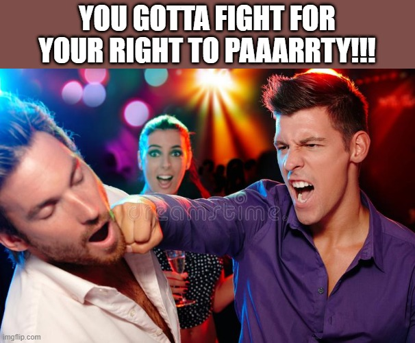 Fight For Your Right To Party |  YOU GOTTA FIGHT FOR YOUR RIGHT TO PAAARRTY!!! | image tagged in beastie boys,fight for your right,party,lol,wtf,fighting | made w/ Imgflip meme maker
