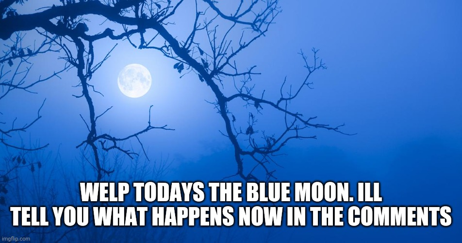 Welp |  WELP TODAYS THE BLUE MOON. ILL TELL YOU WHAT HAPPENS NOW IN THE COMMENTS | image tagged in werewolves,vampires,and witches too | made w/ Imgflip meme maker