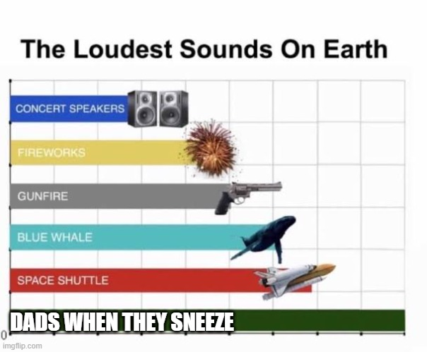 They Sneeze Loudly |  DADS WHEN THEY SNEEZE | image tagged in the loudest sounds on earth | made w/ Imgflip meme maker