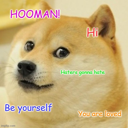 Be who you are |  HOOMAN! Hi; Haters gonna hate; Be yourself; You are loved | image tagged in memes,doge | made w/ Imgflip meme maker
