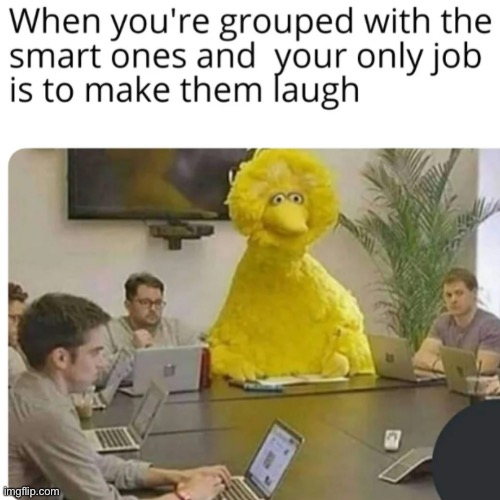 The one job I have at my school | image tagged in big bird | made w/ Imgflip meme maker