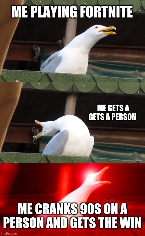 Inhaling seagull |  ME PLAYING FORTNITE; ME GETS A GETS A PERSON; ME CRANKS 90S ON A PERSON AND GETS THE WIN | image tagged in inhaling seagull | made w/ Imgflip meme maker