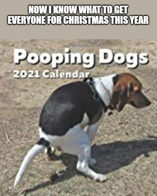 Pooping Dogs Calendar For Christmas |  NOW I KNOW WHAT TO GET EVERYONE FOR CHRISTMAS THIS YEAR | image tagged in pooping,dogs,funny dogs,calendar,christmas,funny | made w/ Imgflip meme maker