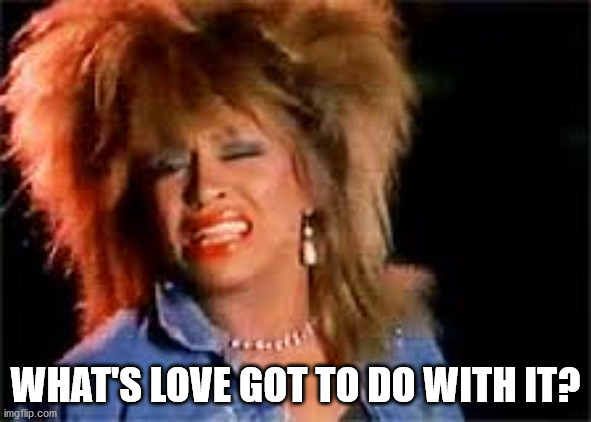 Tina Turner | WHAT'S LOVE GOT TO DO WITH IT? | image tagged in tina turner | made w/ Imgflip meme maker