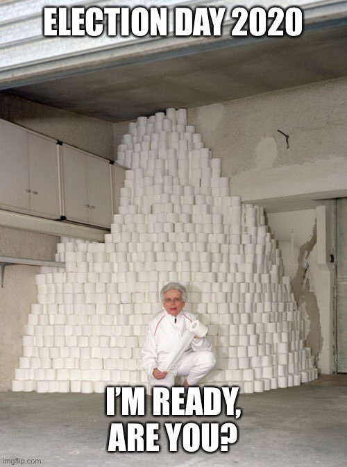 mountain of toilet paper |  ELECTION DAY 2020; I'M READY, ARE YOU? | image tagged in mountain of toilet paper,tp,toiler paper,election,2020,election 2020 | made w/ Imgflip meme maker