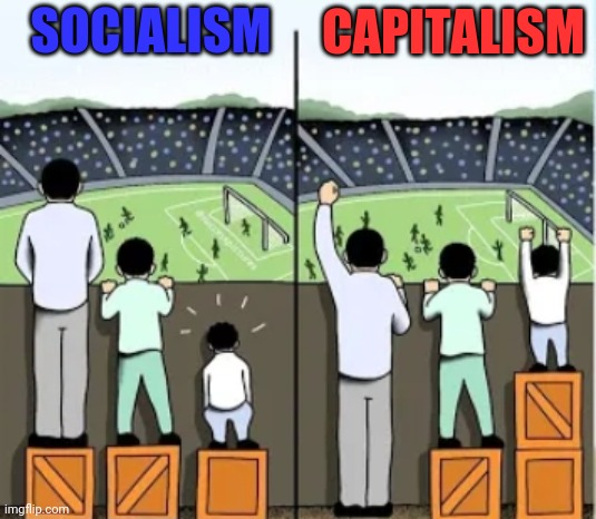 For anyone who needs help... |  CAPITALISM; SOCIALISM | image tagged in socialism,capitalism,trump 2020 | made w/ Imgflip meme maker