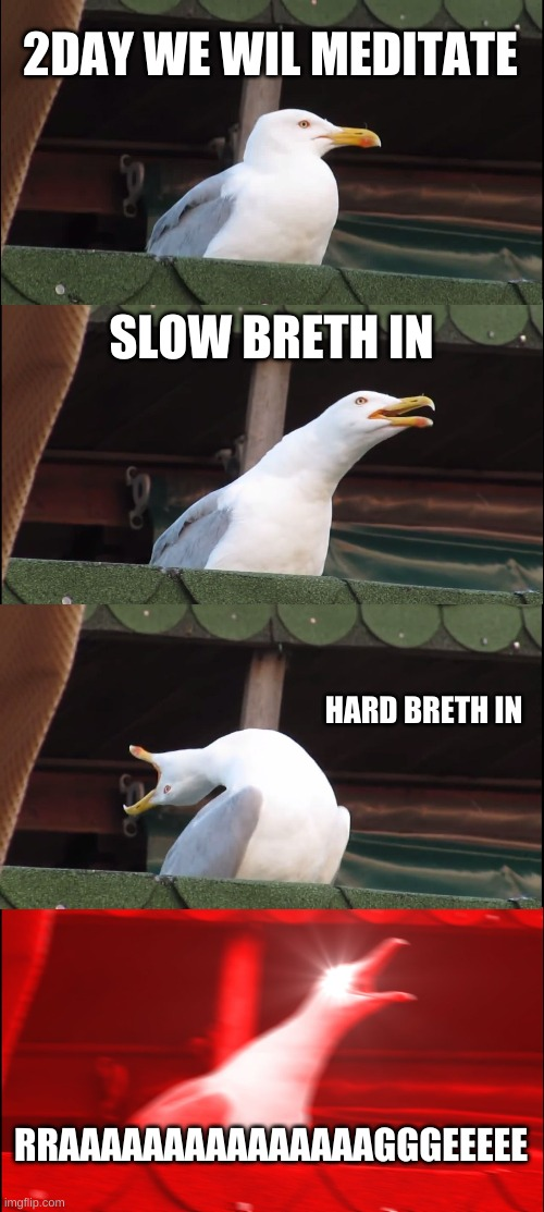 Inhaling Seagull |  2DAY WE WIL MEDITATE; SLOW BRETH IN; HARD BRETH IN; RRAAAAAAAAAAAAAAAGGGEEEEE | image tagged in memes,inhaling seagull,meditation | made w/ Imgflip meme maker