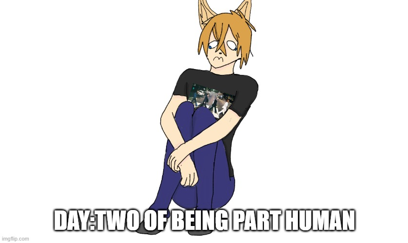 Bonus:Link without his hoodie for once |  DAY:TWO OF BEING PART HUMAN | made w/ Imgflip meme maker