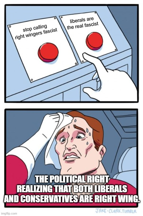 stop calling right wingers fascist liberals are the real fascist THE POLITICAL RIGHT REALIZING THAT BOTH LIBERALS AND CONSERVATIVES ARE RIGH | image tagged in memes,two buttons | made w/ Imgflip meme maker