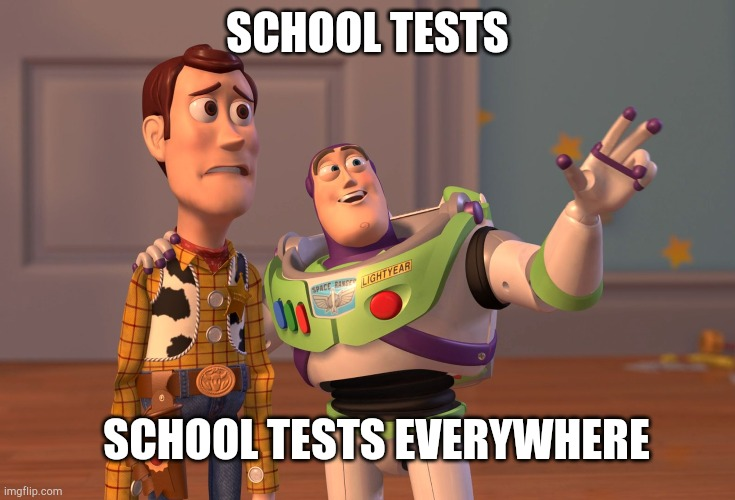 X, X Everywhere |  SCHOOL TESTS; SCHOOL TESTS EVERYWHERE | image tagged in memes,x x everywhere | made w/ Imgflip meme maker