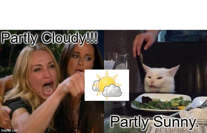 Weather Or Not... |  Partly Cloudy!!! Partly Sunny. | image tagged in memes,woman yelling at cat | made w/ Imgflip meme maker