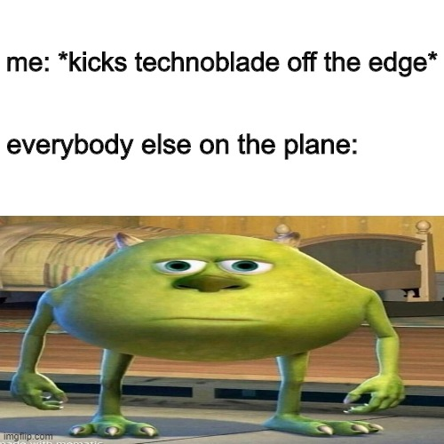blank image |  me: *kicks technoblade off the edge*; everybody else on the plane: | image tagged in memes,mike wazowski,funny meme,funny,funny memes,very funny | made w/ Imgflip meme maker