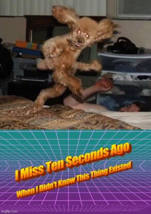 i won't be sleeping tonight | image tagged in i miss ten seconds ago | made w/ Imgflip meme maker
