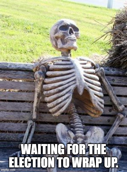 Please wrap up the 2020 election |  WAITING FOR THE ELECTION TO WRAP UP. | image tagged in memes,waiting skeleton,election 2020,2020 sucks,donald trump,joe biden | made w/ Imgflip meme maker