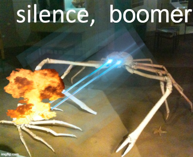 boomer | image tagged in silence crab | made w/ Imgflip meme maker