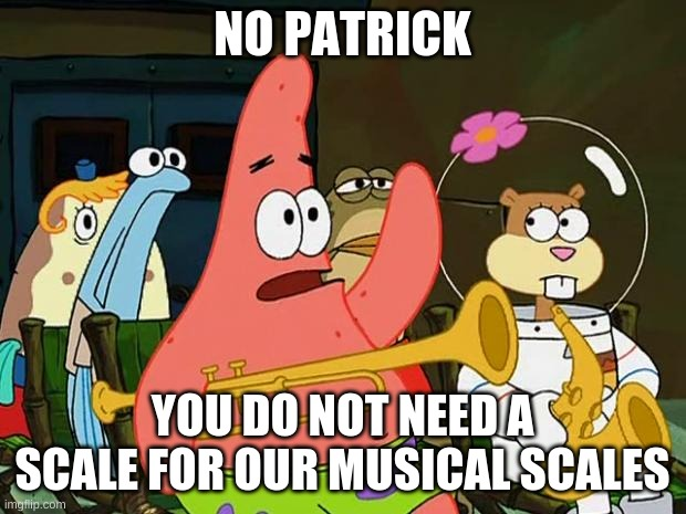 Patrick Mayonaise |  NO PATRICK; YOU DO NOT NEED A SCALE FOR OUR MUSICAL SCALES | image tagged in patrick mayonaise | made w/ Imgflip meme maker