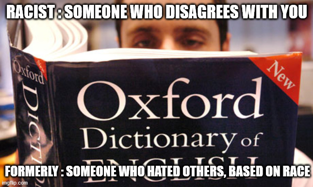 dictionary |  RACIST : SOMEONE WHO DISAGREES WITH YOU; FORMERLY : SOMEONE WHO HATED OTHERS, BASED ON RACE | image tagged in dictionary | made w/ Imgflip meme maker