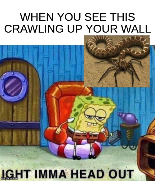 Spongebob Ight Imma Head Out Meme |  WHEN YOU SEE THIS CRAWLING UP YOUR WALL | image tagged in memes,spongebob ight imma head out | made w/ Imgflip meme maker