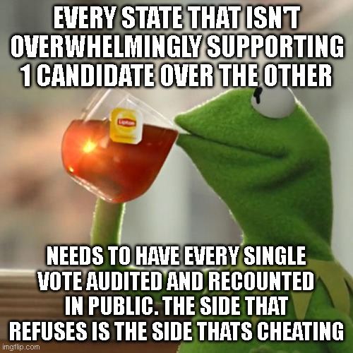 Shenanigans are afoot and none of this is trustworthy.. |  EVERY STATE THAT ISN'T OVERWHELMINGLY SUPPORTING 1 CANDIDATE OVER THE OTHER; NEEDS TO HAVE EVERY SINGLE VOTE AUDITED AND RECOUNTED IN PUBLIC. THE SIDE THAT REFUSES IS THE SIDE THATS CHEATING | image tagged in memes,but that's none of my business,kermit the frog | made w/ Imgflip meme maker