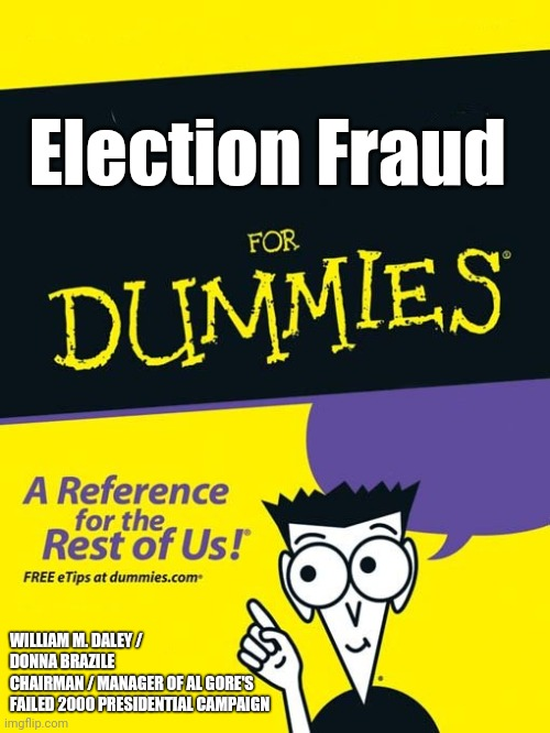 Election Fraud |  Election Fraud; WILLIAM M. DALEY / DONNA BRAZILE  CHAIRMAN / MANAGER OF AL GORE'S  FAILED 2000 PRESIDENTIAL CAMPAIGN | image tagged in for dummies book | made w/ Imgflip meme maker