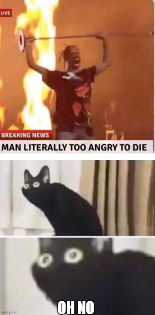 uh oh |  OH NO | image tagged in man too angry to die,oh no black cat | made w/ Imgflip meme maker