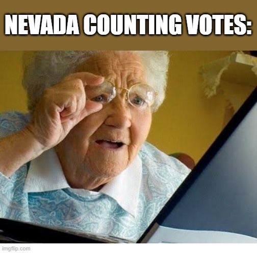 Nevada |  NEVADA COUNTING VOTES: | image tagged in old lady at computer,election 2020,nevada,trump,joe biden,election | made w/ Imgflip meme maker