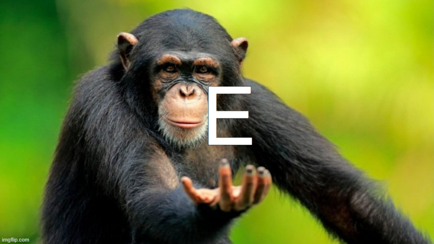 E Monkey | image tagged in haha monkey,monkey,haha,e | made w/ Imgflip meme maker