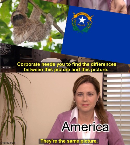 nevada hurry up |  America | image tagged in memes,they're the same picture | made w/ Imgflip meme maker