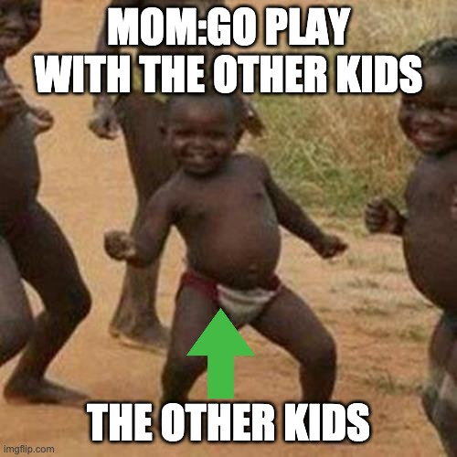Third World Success Kid Meme |  MOM:GO PLAY WITH THE OTHER KIDS; THE OTHER KIDS | image tagged in memes,third world success kid | made w/ Imgflip meme maker