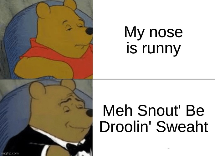 Tuxedo Winnie The Pooh Meme |  My nose is runny; Meh Snout' Be Droolin' Sweaht | image tagged in memes,tuxedo winnie the pooh | made w/ Imgflip meme maker
