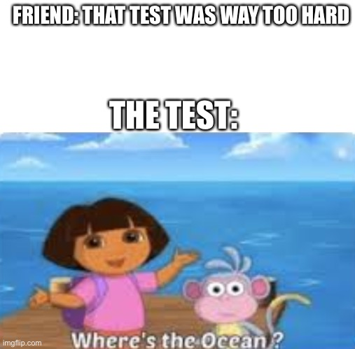 It do be like that |  FRIEND: THAT TEST WAS WAY TOO HARD; THE TEST: | image tagged in blank white template,dora | made w/ Imgflip meme maker
